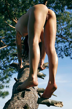 Alessandra On Tree For Just Nude